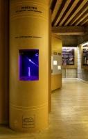 Ver Tige, Vitrine du Muséum, 2012